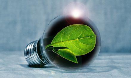 Energie z obnovitelných zdrojů na vzestupu