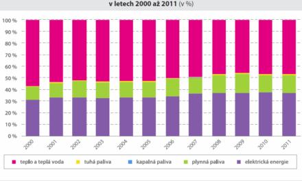 Růst cen zatěžuje české domácnosti