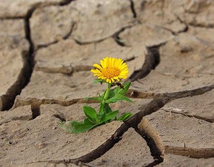 Ministr zemědělství: Máme plán na využití meliorací, většinu přebudujeme tak, aby zadržely vodu pro období sucha