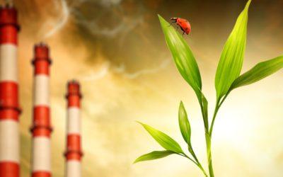 Ve vládě sílí hlasy proti pálení uhlí až do roku 2038. Odmítne doporučení uhelné komise a schválí rok 2033?