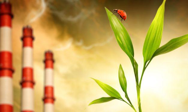 Vývoj informačních systémů o energetice