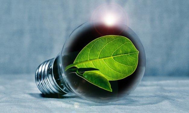 MPO: Výzva 5/2021, aktivita 2C, Nástroje a podklady pro rozšiřování informací a vzdělávání v oblasti úspor energie včetně podpory mezinárodní spolupráce
