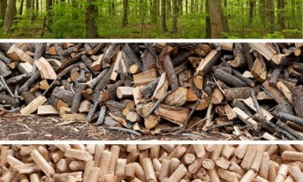 Nový rekord: v Česku se vyrobilo 400 tisíc tun dřevěných pelet
