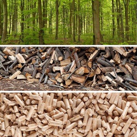 Češi topí dřevem více a více, prodeje kotlů na pelety citelně rostou