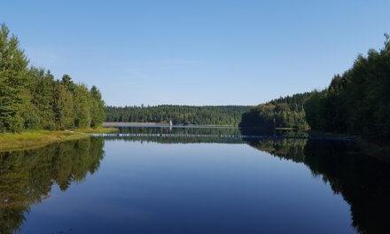 EIB podporuje plány Ministerstva zemědělství na lepší hospodaření s vodou