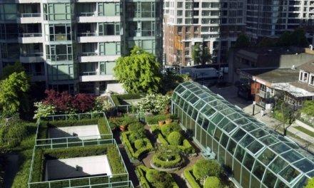 Uplynulé desetiletí bylo nejteplejší v historii. Při projektování staveb se proto více preferují zelené střechy či venkovní stínění