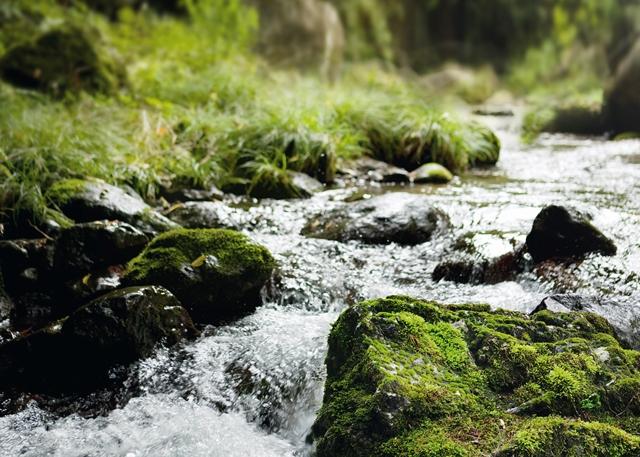 Kofola dokazuje, že pro ni udržitelnost není pouhou frází