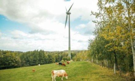 Košík.cz představuje energetický model budoucnosti: Zelenou elektřinu pro něj, jeho farmáře i zákazníky zajistí Nano Energies