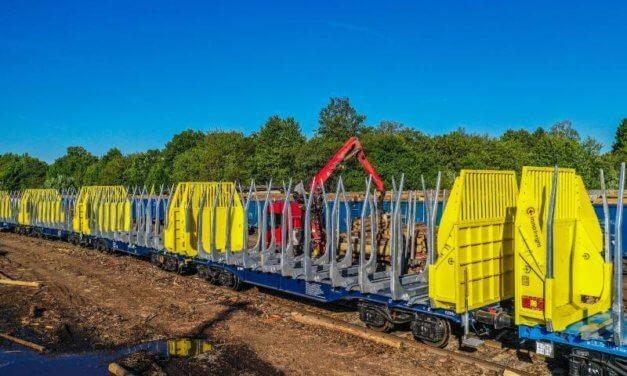 ČD Cargo se zásadním způsobem podílí na zvládání kůrovcové kalamity