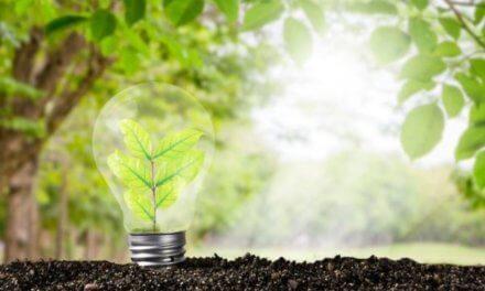 Zelený plán obnovy: povzbudí ekonomiku, vyčistí energetiku a ozdraví krajinu