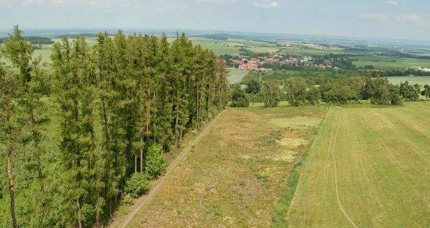 Ministerstvo zemědělství podpoří půl miliardou korun výzkum na ochranu zvířat, odolnost stromů vůči škůdcům, ochranu vody a prevenci před erozí