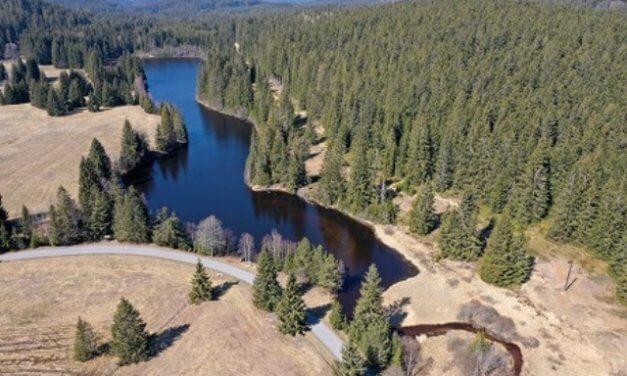 Horský rybník se po povodni obnoví podle hydrobiologů už za dva týdny