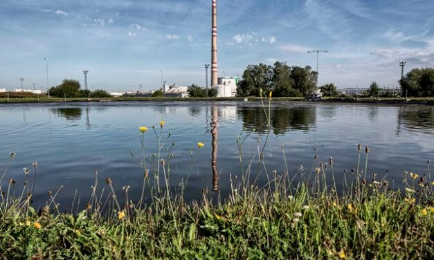 Světový den vody: ŠKODA AUTO přispívá trvale udržitelným managementem vody
