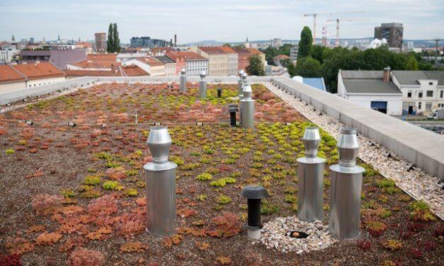 Noční rozdíl teplot mezi městy a jejich okolím je až 7 °C. Přehřívání metropolí může řešit výsadba stromů i zelené budovy