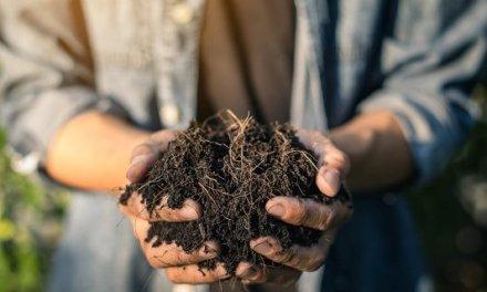 Kompostárny zvou v Mezinárodním týdnu kompostování do svých provozů