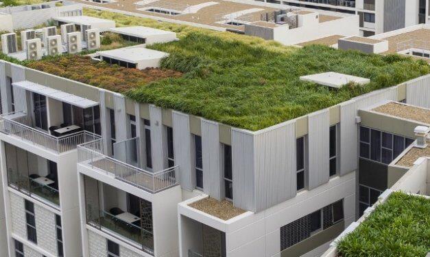 V horkých letních dnech je zelená střecha doslova ekologickou klimatizací pro celou budovu
