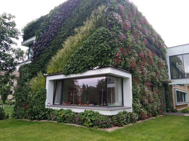 Majitelé veřejných a komerčních budov se zelenými střechami nově ušetří až 20 tisíc korun ročně za srážkovné