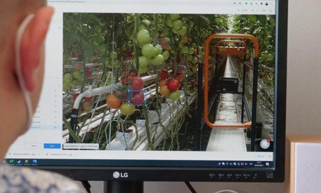 BERABOT: Robotizace a virtuální realita v českém zemědělství. Unikátní monitorovací systém rostlin detekuje škůdce a předpovídá sklizeň