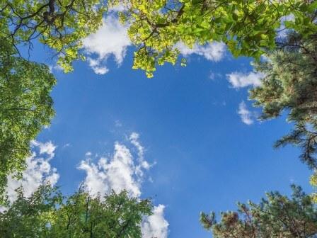 Globální průzkum společnosti Epson odhalil nedostatečné povědomí o klimatické situaci – 46 % respondentů věří, že se během jejich života lidstvu podaří klimatickou krizi odvrátit